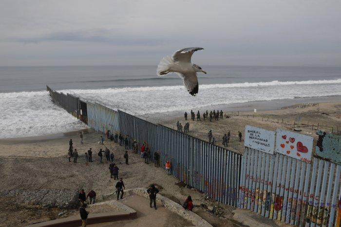 Mur Mexique USA avec oiseau